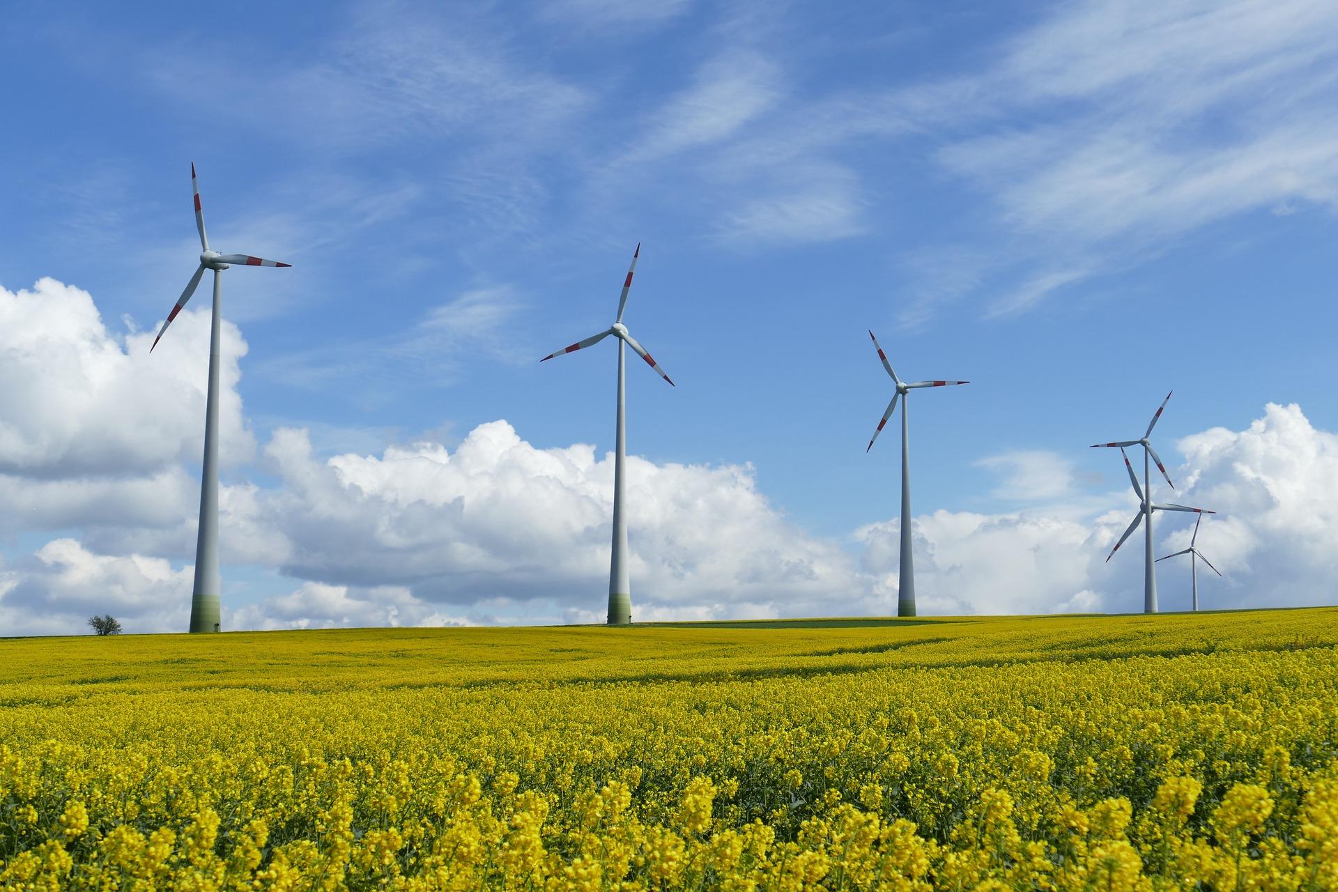 esempio di impianto eolico TecnoAcademy